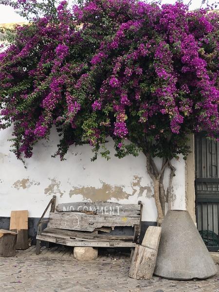 A bench in Faro Portugal by Anita Varga