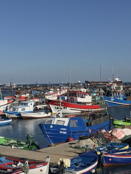 Portugal Setubal port by Anita Varga