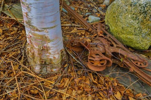 Barn Trolley ap 2241 by Artistic Photography