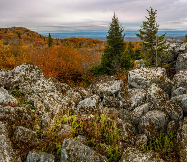 Bear Rocks Overlook apmi 1789 by Artistic Photography