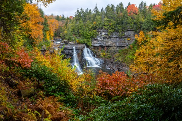 Blackwater Falls apmi 1904 by Artistic Photography