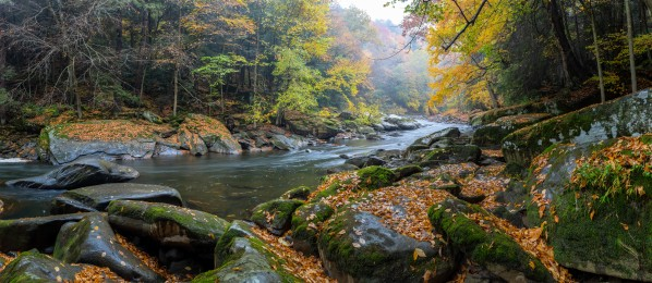 Slippery Rock Creek apmi 1929 by Artistic Photography