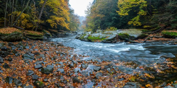 Slippery Rock Creek apmi 1938 by Artistic Photography