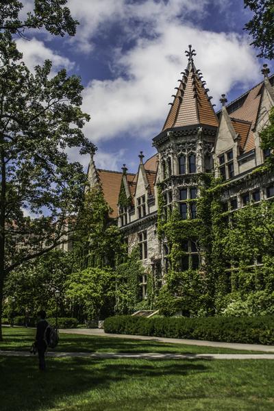 College Green by Ashley ML Studios