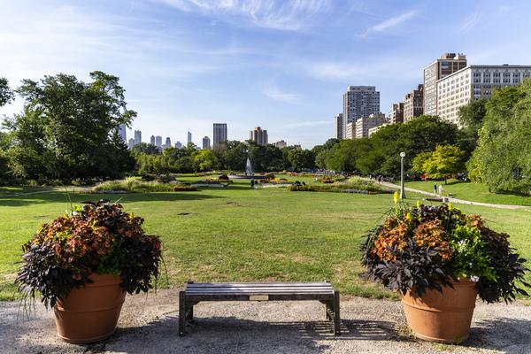 Look Through Lincoln Park by Ashley ML Studios