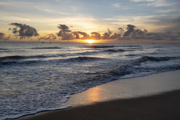 Sunrise Golden by Augusto Miranda
