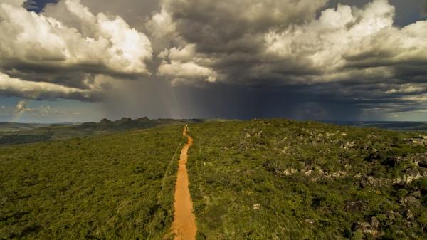 Golden way into the rain by Augusto Miranda