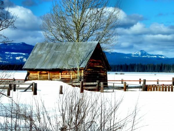 Winter Homestead  by Aurelia Schanzenbacher Sisters Fine Arts