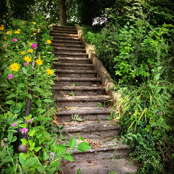 Escalier by BABS