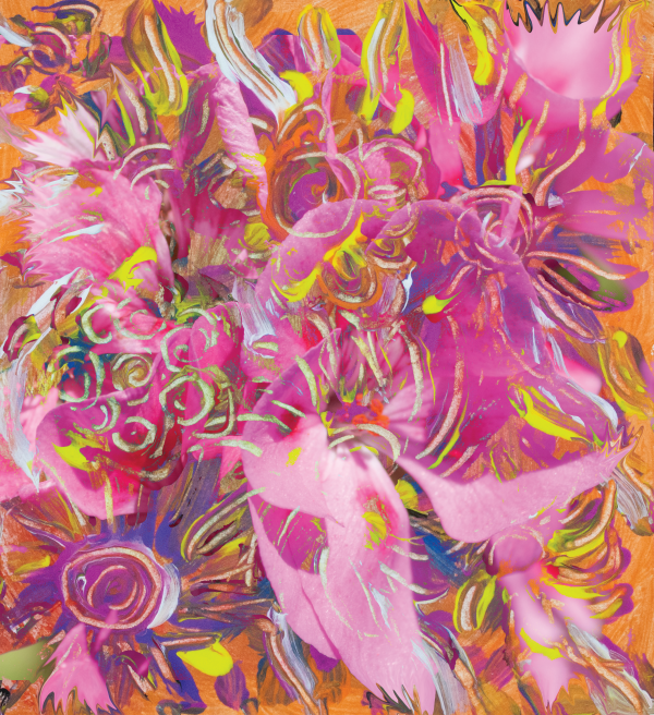 pink orange flower abstract by BBS Art