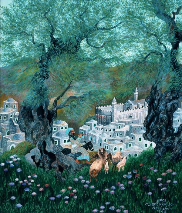 1993 014 by Baruch Nachshon