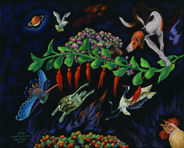2001 05 by Baruch Nachshon