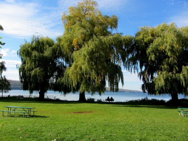 Stewart Park Ithaca New York by Battaboom