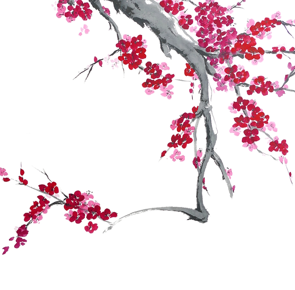 Plum Blossom - Spring is Coming - Cally by Birgit Moldenhauer