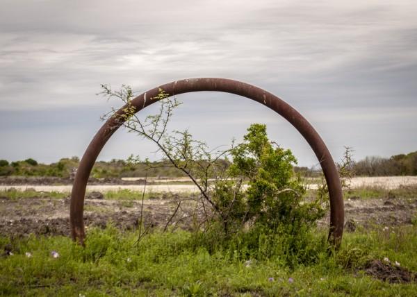 Iron Wheel by Brad Jolly