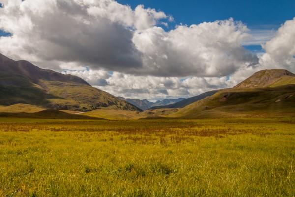 Green Plateau by Brendan McMillan