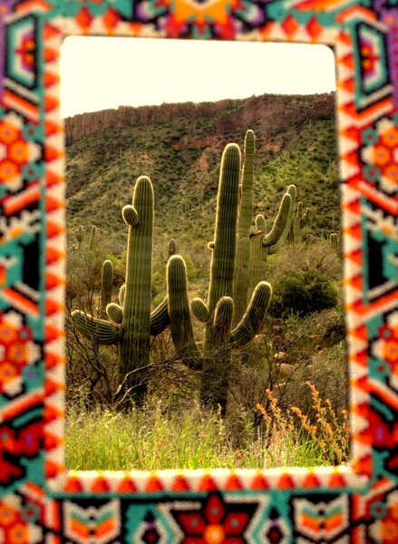 Glory to the Cactus by Brett Noel