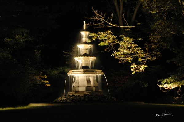 FountainNight by Brian Camilleri Photography