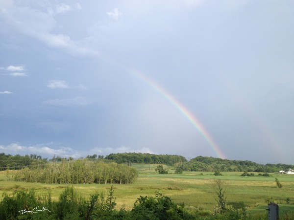 Rainbow Meadow by Brian Camilleri Photography