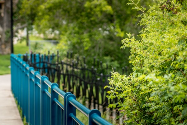 TheFence_StAlbert_IMG_3625 by Brian Macleod