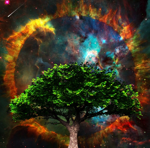 Tree of Life by Bruce Rolff