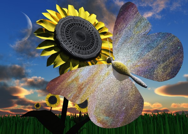 Butterfly on Sunflower by Bruce Rolff