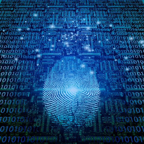Digital Fingerprint by Bruce Rolff