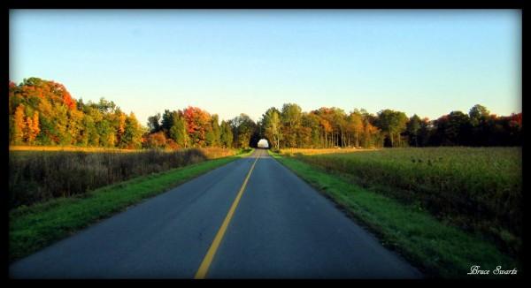 Tree Tunnel & Fall Settings by Bruce Swartz