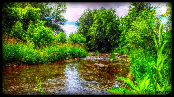 Clear Water Creek in HDR by Bruce Swartz