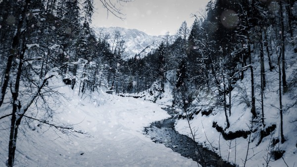 Snowy creek in Black and White by By the C Media