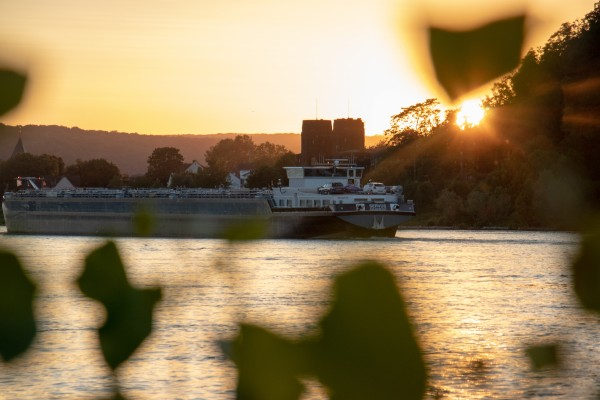 Rhine Oil by C-Nick Photography