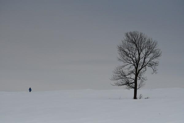 Marche hivernale by CEDANSBOITE