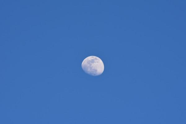 Daytime Moon by Cameraman Klein