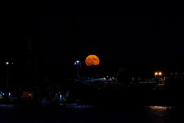Hunters Moon by Cameraman Klein
