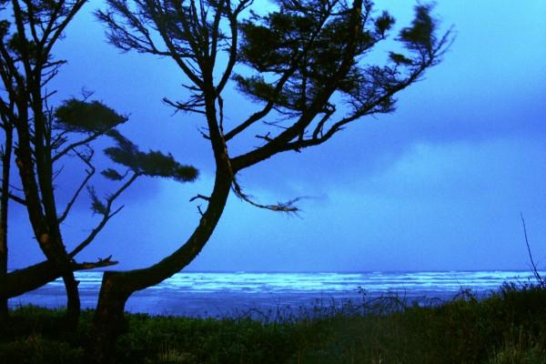 Long Exposure Night Coast by Chris Kadin