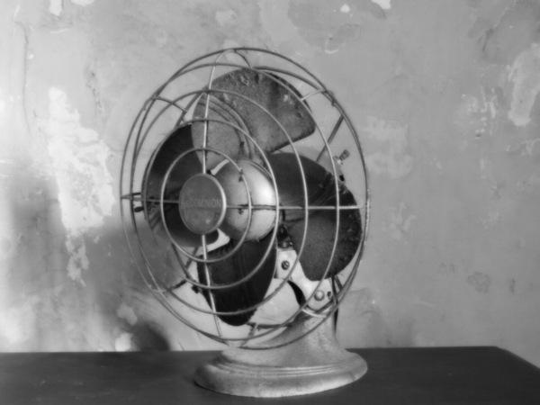 Shawshank Fan by Cindy Rogers