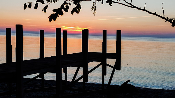 Lake Erie Doc by Cindy Rogers