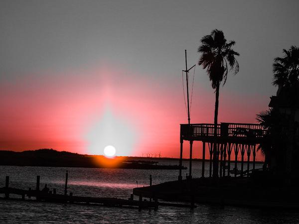 Good Night Sun by Cindy Rogers