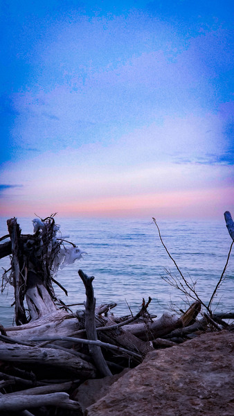 Blue Winter Morning by Cindy Rogers
