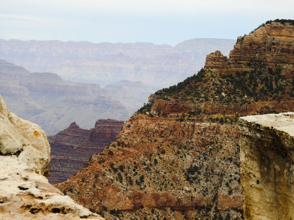 Grand Canyon South Rim by Cindy Rogers
