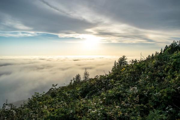Pacific Fog Sunset by Clare Kathleen Cornelius