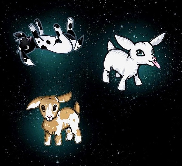 Space Goats by Claudia Rosa Kirkby
