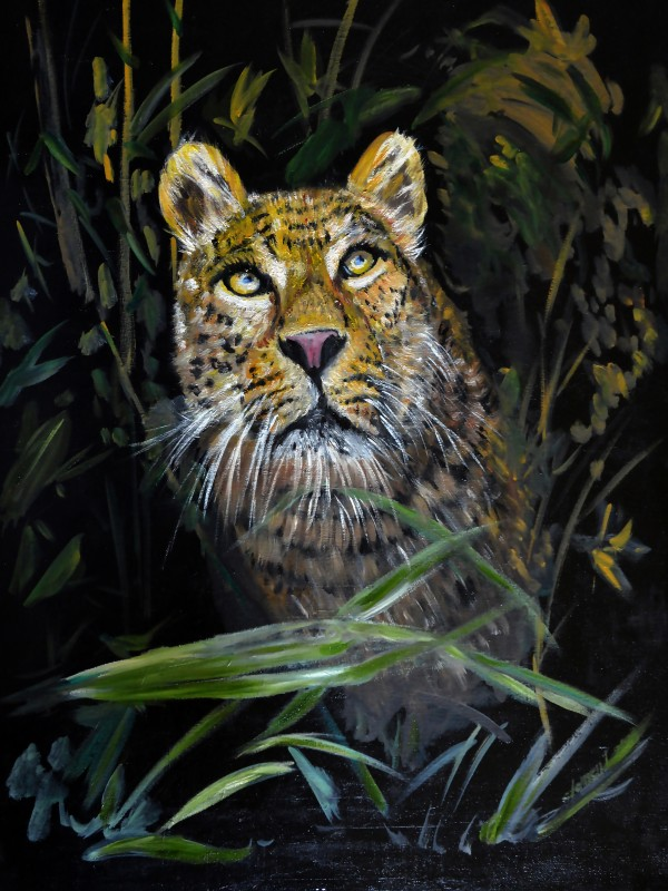 AO006 - Leopard is Watching by Clement Tsang
