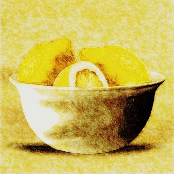 Zitronen  by Dagmar Marina