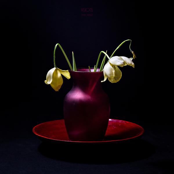 Etude Zen  9 c by Daniel Thibault artiste-photographe