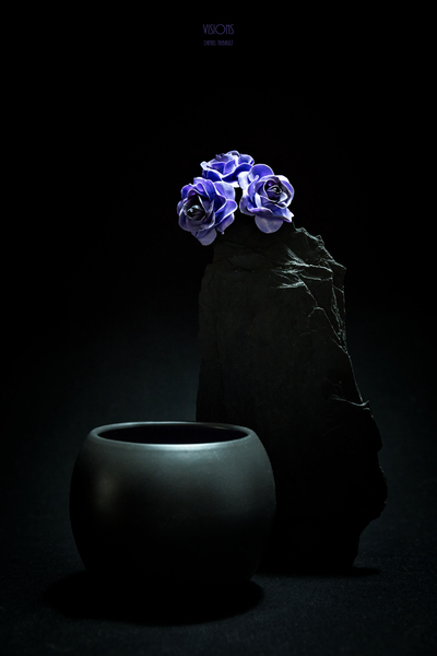 Etude Zen  10 c by Daniel Thibault artiste-photographe