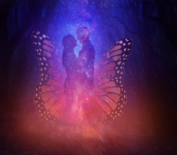 Butterfly by Devenald Sharma