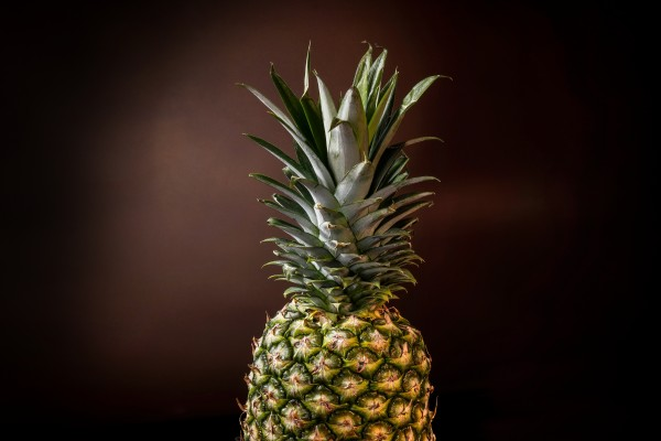 Big pineapple with its leaves by Francois Lariviere