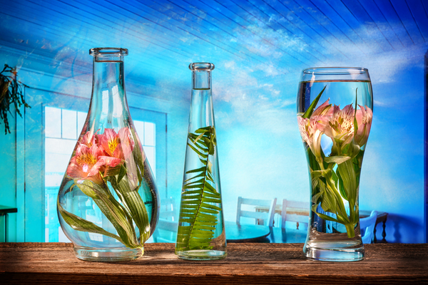 Cut flowers and tropical plants in a glass of water on a barn wood table  by Francois Lariviere