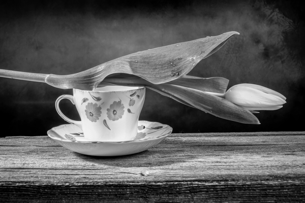 Still life of a closed yellow tulip placed on an orange and white ornate pottery cup on a barn wood table black and white by Francois Lariviere